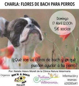 charlaflores