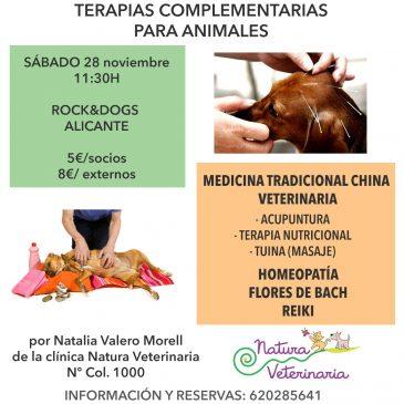 Próximos cursos en Rock & Dogs Alicante!