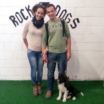 CLUB DE ADIESTRAMIENTO ROCK & DOGS ALICANTE!