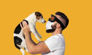 Coronavirus y perros