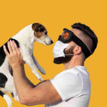Cuarentena con perros Coronavirus